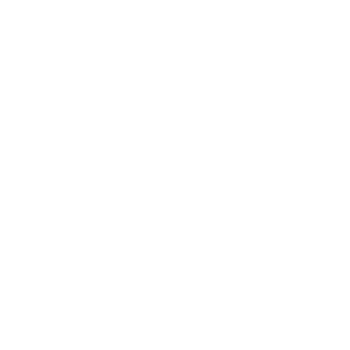 Brown and Newirth